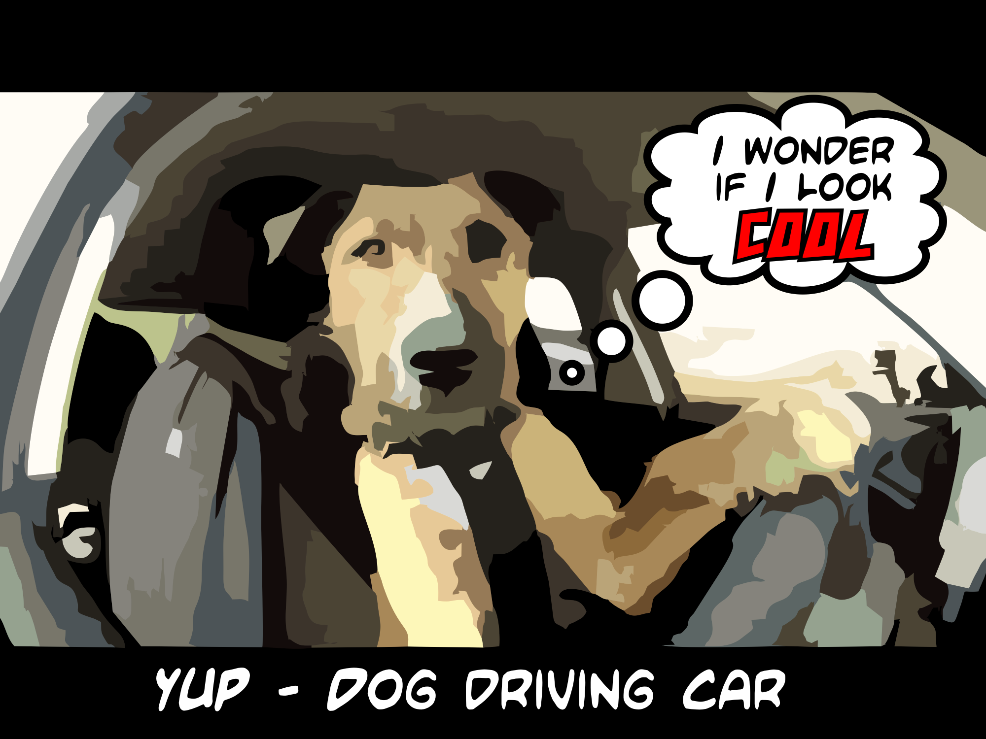 Dogs driving cars 2014