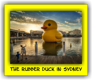 The Rubber Duck in Sydney
