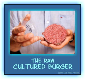 The cultured burger